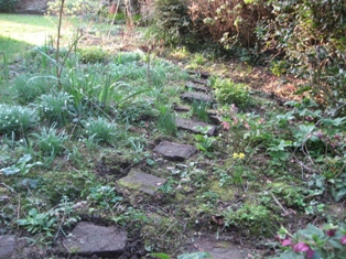 More stepping stones